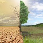 Our common future: dealing with climate change