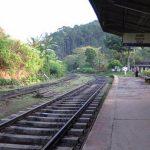 Sri Lanka: planes, trains and tea plantations