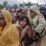 Rohingya death toll 22 times higher than official estimate: Survey