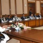 Cabinet condemns Kasur incident, offers Fateha for Quetta martyrs