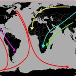 Changing global paradigms; migration past and present