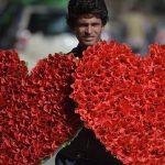 No Valentine's Day in Pakistan as fanatics reign supreme