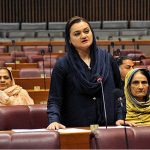 Institutions must function within limits: Marriyum