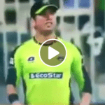 Fight between Sohail Khan and Yasir Shah during the match