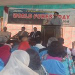 'Forestry vital to combat climate change'