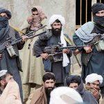 Squashing domestic Terrorism