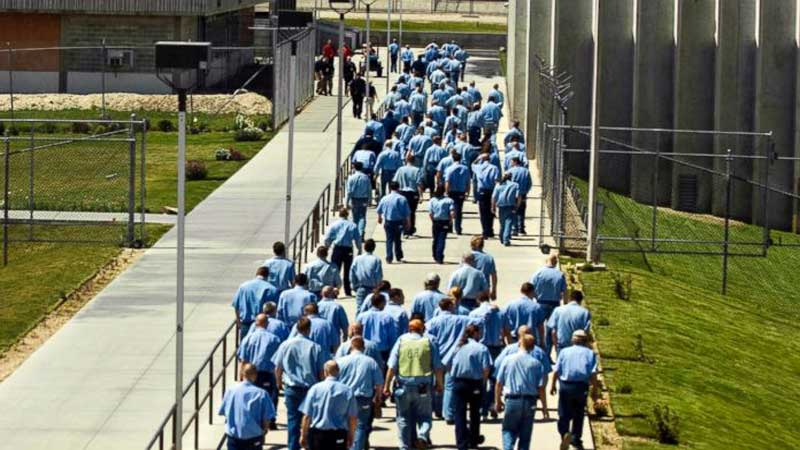 Many rooting for inmates after credit bug exposed on devices