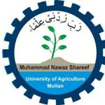 MNSUA launches four-year BSc programme in Agro Industrial Engineering