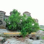 Agham Kot — a forgotten archaeological site of Sindh