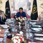 ECC okays Rs 17bn support package for PIA