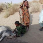 The PTI government must help Thar