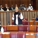 Fracas in NA as opp terms deal with TLP a 'surrender'