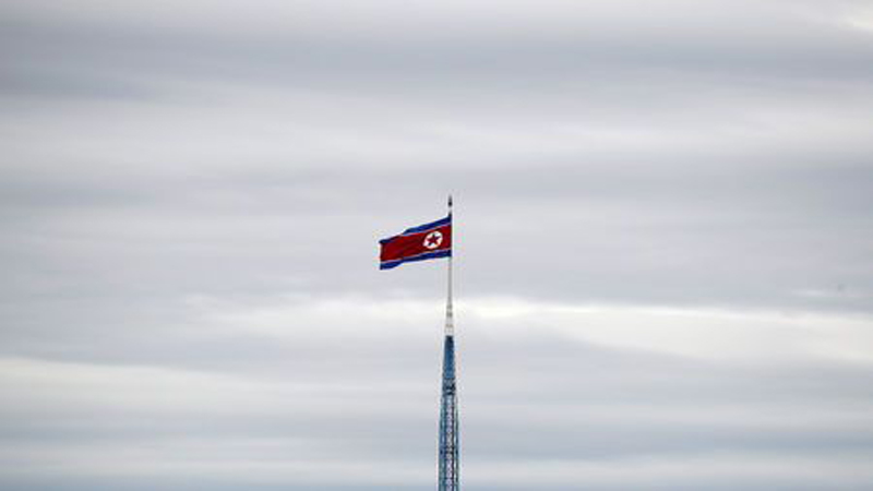 Help on dissertation north korea