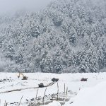 Three people killed 7 missing in Kashmir avalanche