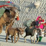 Nomads see a dark future in Pakistan