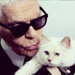 Karl Lagerfeld's cat, Choupette could inherit his $200 million fortune