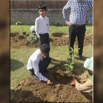 'Afforestation in the City of Gardens' is a commitment to a greener Pakistan