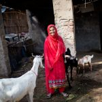 How Goats are Empowering Women in Rural Sindh