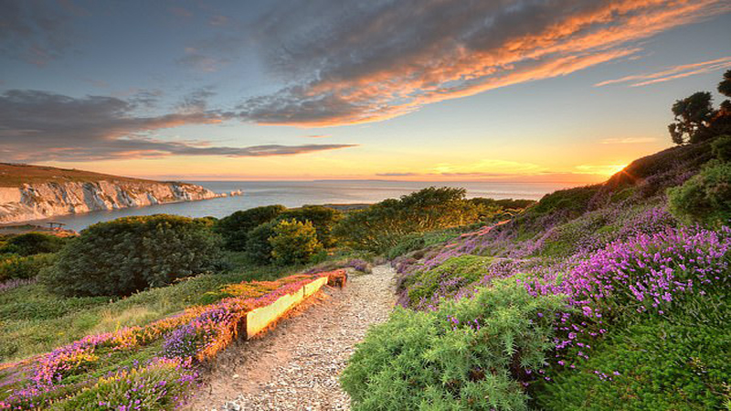 Isle of Wight awarded UNESCO Biosphere Reserve status