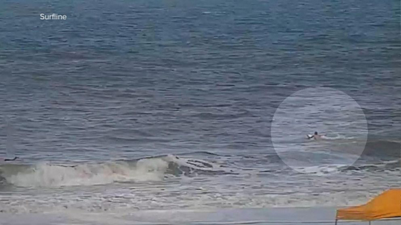 2 people bitten by sharks minutes apart at Florida beach - Daily Times