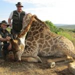 Politicians and conservationists demand a ban on trophy hunting of endangered species