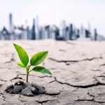 Environmental Risks to Supply Chain