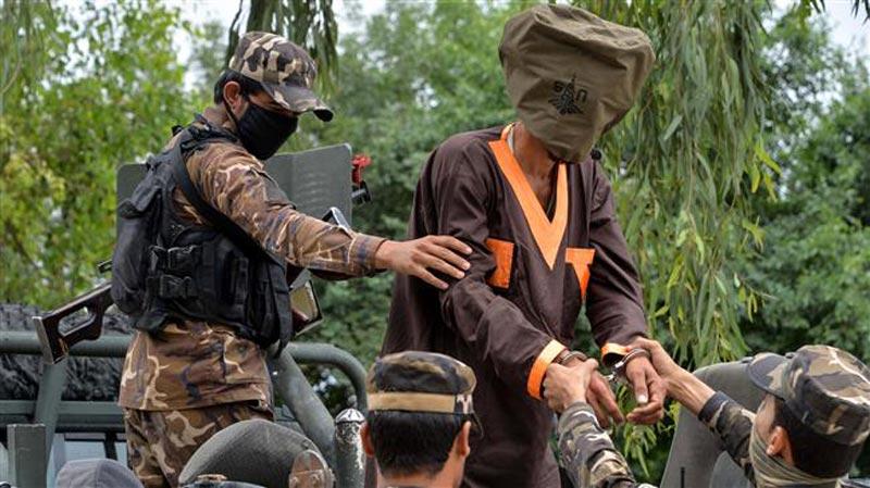 US envoy lands in Afghanistan to help revive Taliban peace