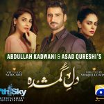 Drama serial 'Dil-e-Gumshuda' ends with record ratings