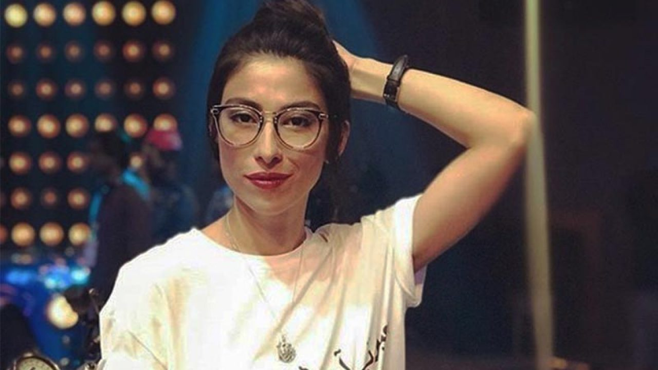 Meesha's witness says he didn't see any act of harassment at jam session -  Daily Times