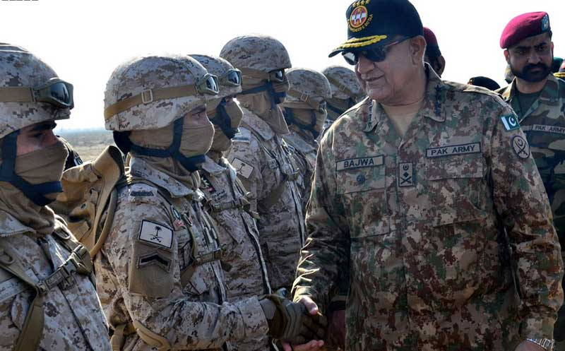 Army ready to take on any challenge: COAS