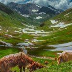 Pakistan named top travel destination for 2020