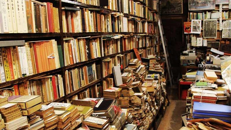 Inevitability of literature