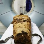 Scientists resurrect voice of 3,000-year-old Egyptian priest with help of 3D printer
