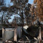 Strong winds and scorching heat reignite Australia's bushfire danger