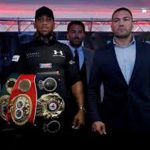 Joshua-Pulev heavyweight title fight postponed