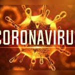 New York-area coronavirus outbreak originated in Europe, not China: study