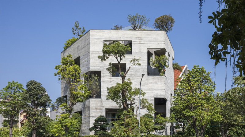 Greenery grows out of concrete House for Trees | Daily times