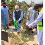 Scenes after plantation drive in Khyber Tribal district
