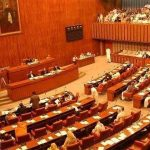 Senate standing committee discusses matter of utilities connections in private housing societies