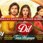 Our favourite moments from the telefilm 'Dil Tera Hogaya'