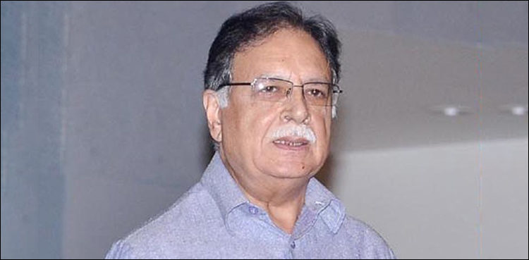 Pervaiz Rasheed ineligible for senate elections