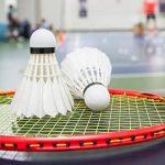 Malaysia Open postponed due to virus surge