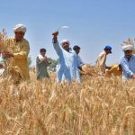 Interest free loans for seasonal crops a blessing for small farmers