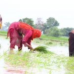 Govt introducing small loan schemes for farmers, traders