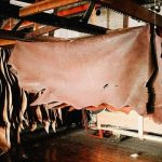 Leather garments exports increased by a record 7.41%
