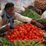 Vegetable exports record increase of 4.02%