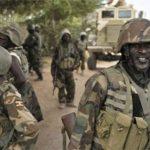 115 killed in military crackdown in Nigeria: Amnesty