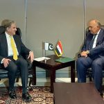 FM Qureshi discusses Afghanistan, other subjects with his Egyptian counterpart