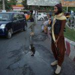 Two Taliban among three killed in Jalalabad attack